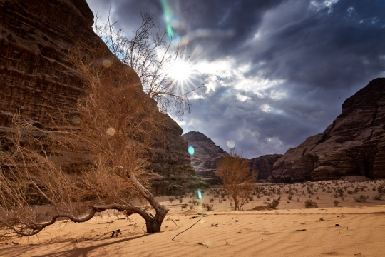 Lumières du desert