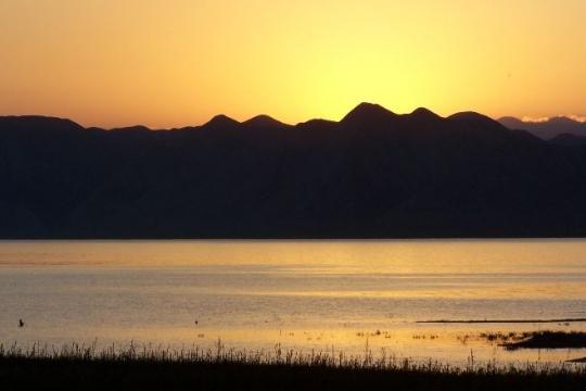 lac isikul