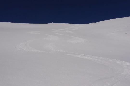 neige de rêve, 5cm de poudre